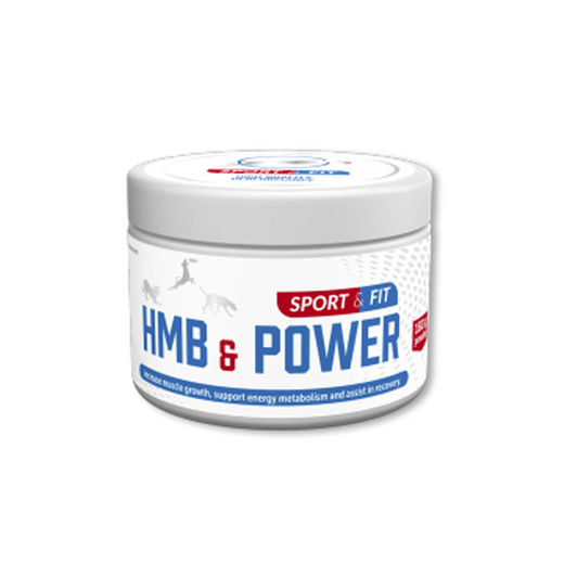 Sport & Fit HMB & Power